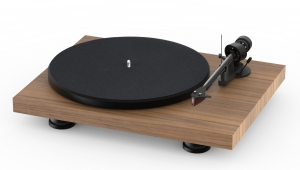 PRO-JECT DEBUT CARBON EVO 2M-RED WALNUT